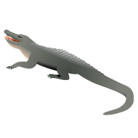 Philippine Crocodile Map Icon