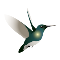 Hummingbird Map Icon