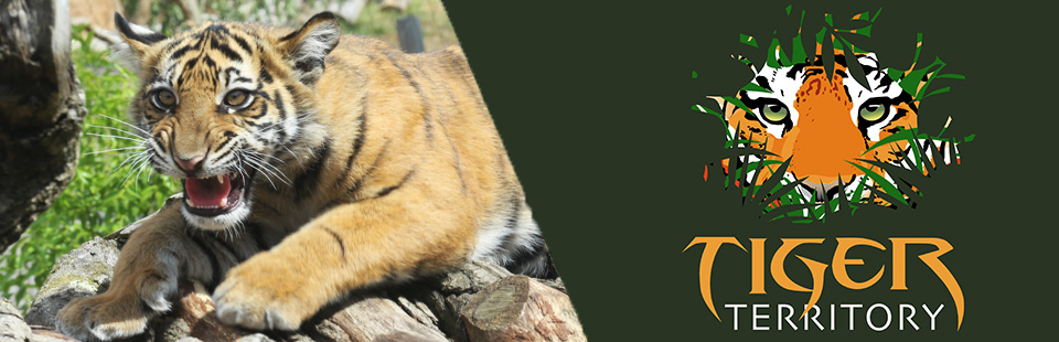 Tiger Territory exhibit banner