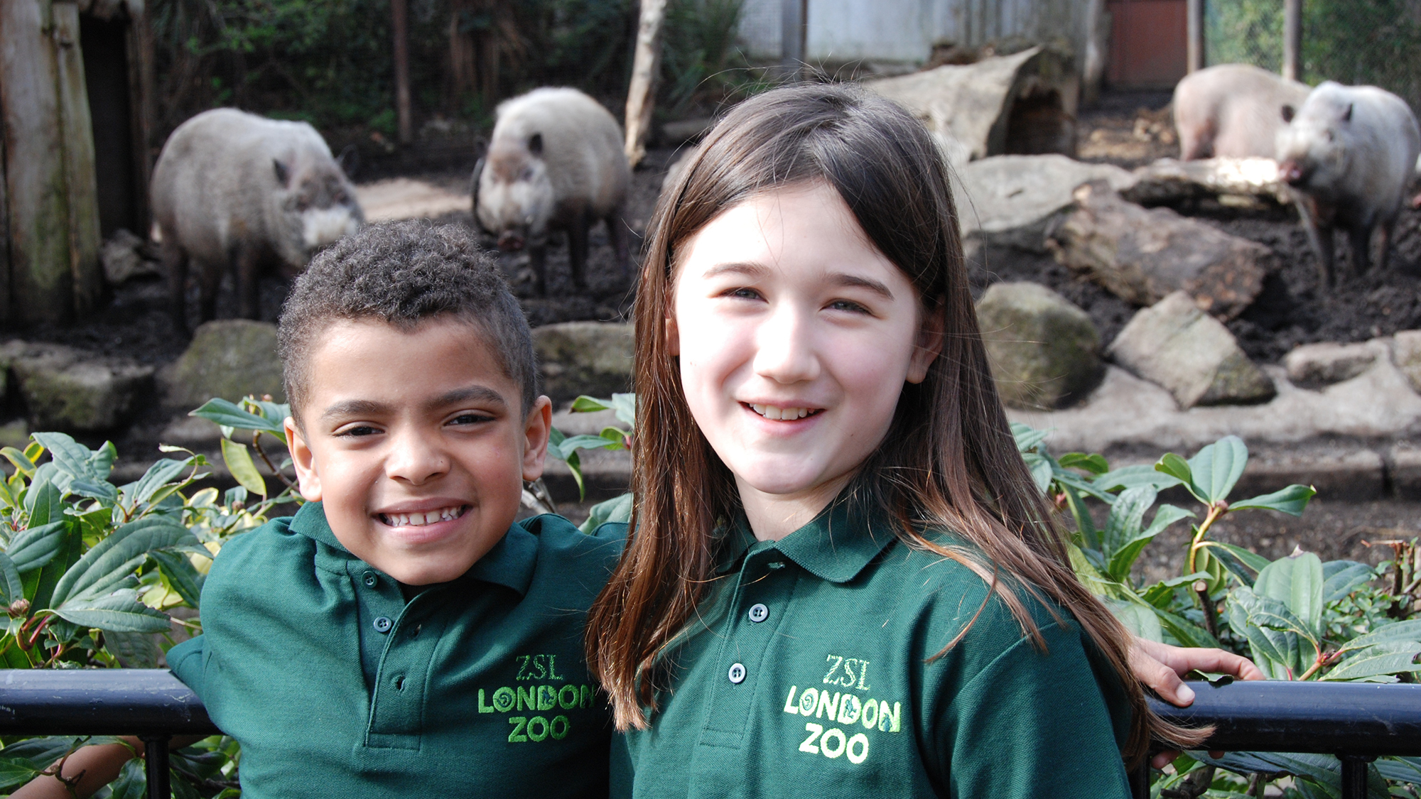 Experiences At ZSL Zoological Society Of London ZSL - Children's birthday party london zoo