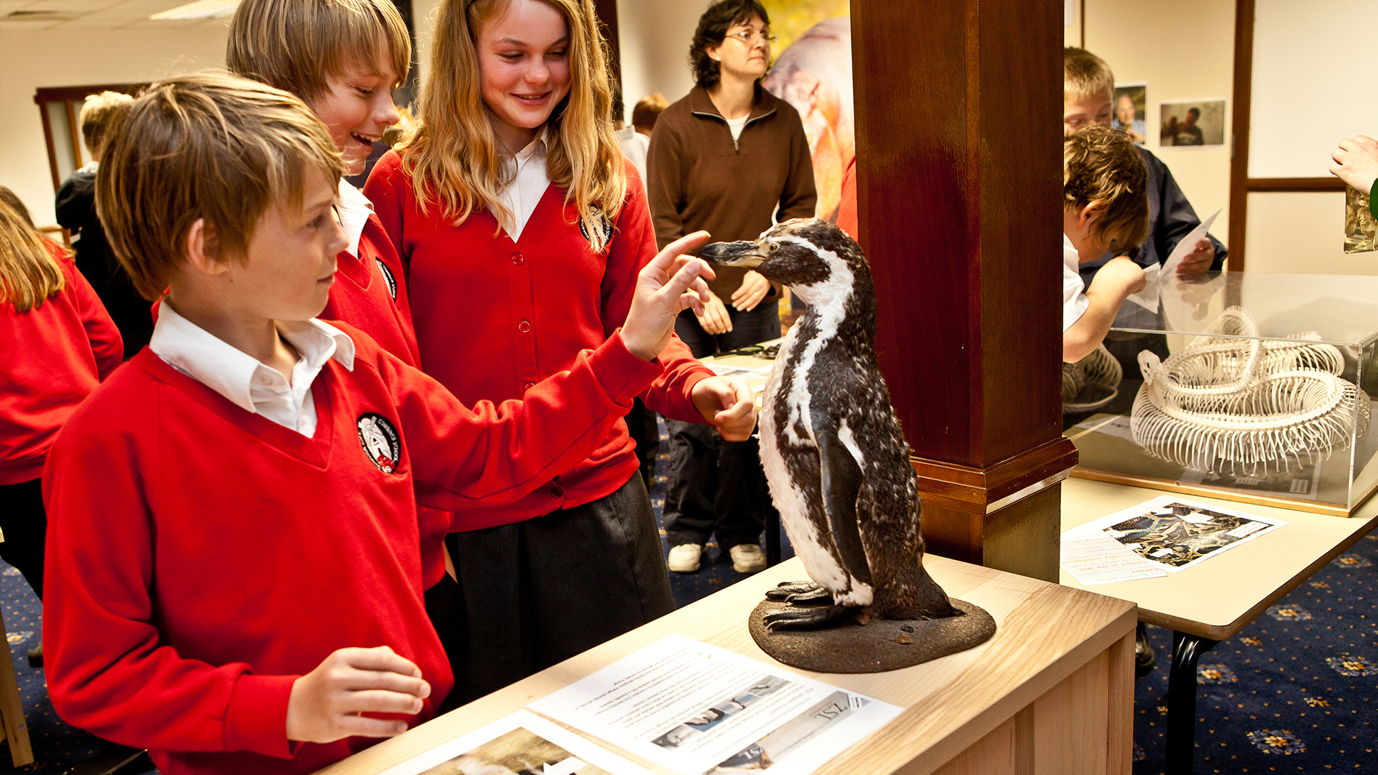 Zsl Whipsnade Zoo Education Sessions Zoological Society