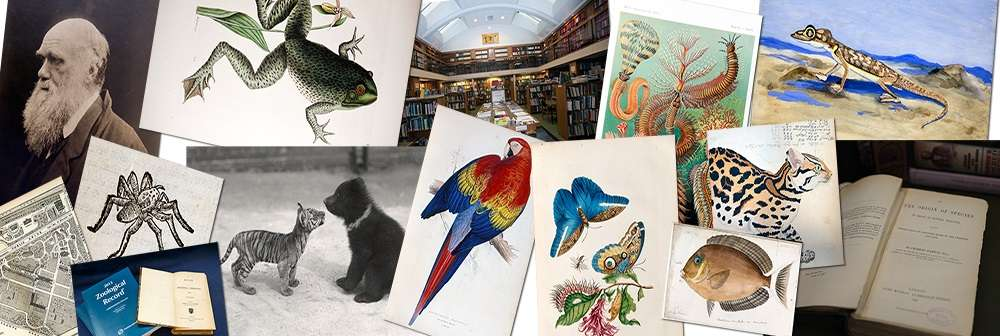 ZSL library collection