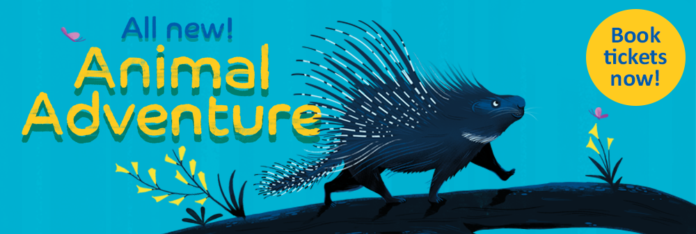 Animal Adventure porcupine banner