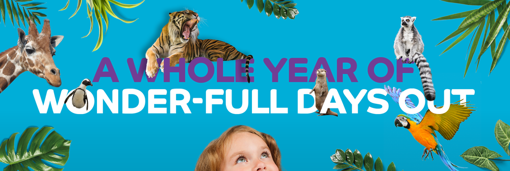 A whole year of wonder-full days out