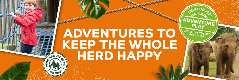 There are adventures to keep the whole herd happy at ZSL Whipsnade Zoo with our brand new play area