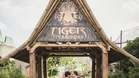 Tiger Territory Wedding Shot