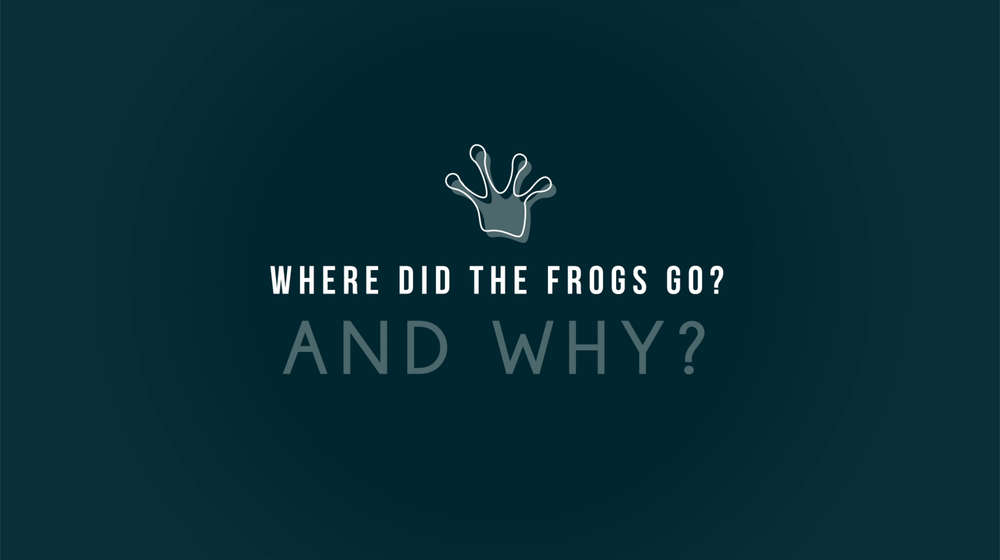 Illustrated title card - 'Where did the frogs go and why?'
