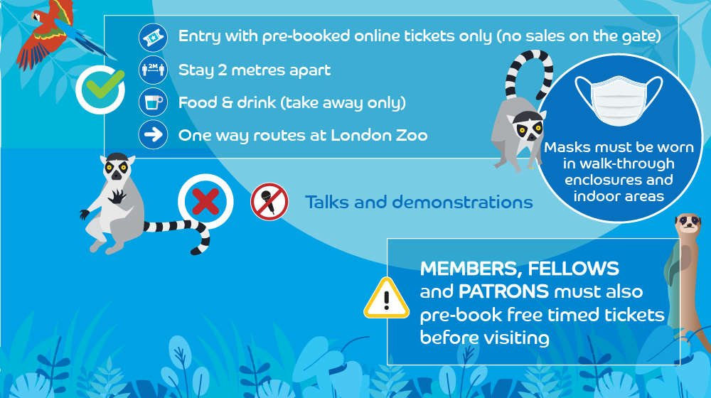 ZSL Zoos safety measures