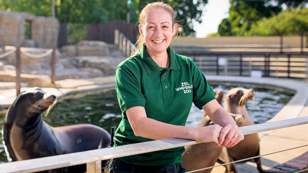 Zookeeper leaning over bannister with sealions behind her