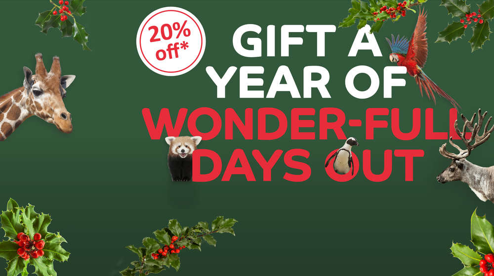 Gift a year of wonder-full days out