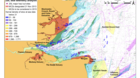 Thames Harbour Seal Tagging Results - Marine Conservation Zones
