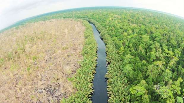 fisheye overhead shot of a river and forest