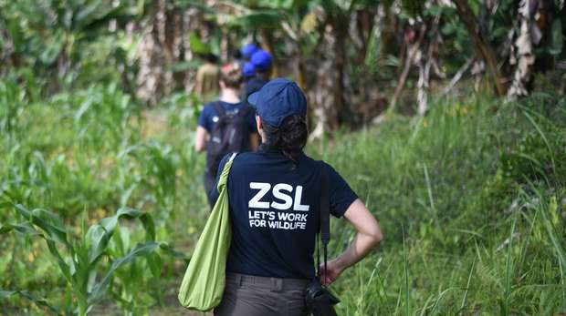 ZSL staff in Madagascar