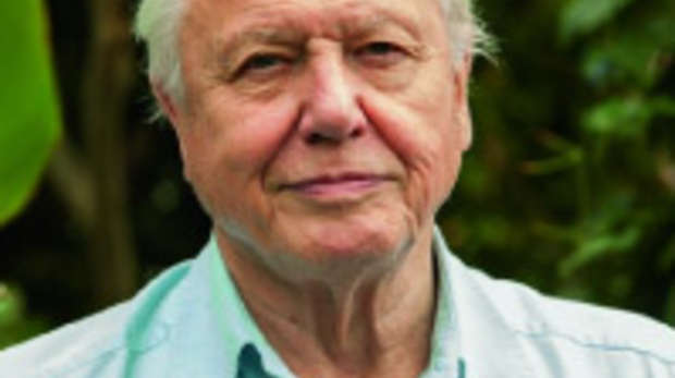 celeb-attenborough