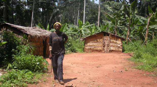 Wildlife Wood Project -  A woman in a clearing in the forest - Cameroon, Africa - Alt