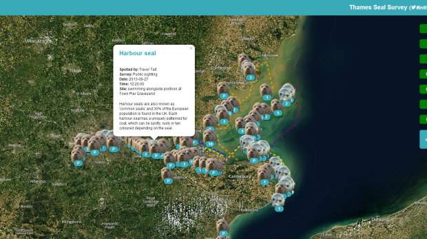 Interactive Seal/Marine Mammal Map Screenshot