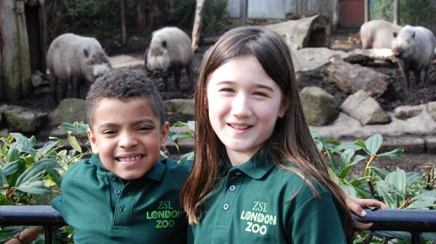 Junior Keeper for a Day at ZSL London Zoo