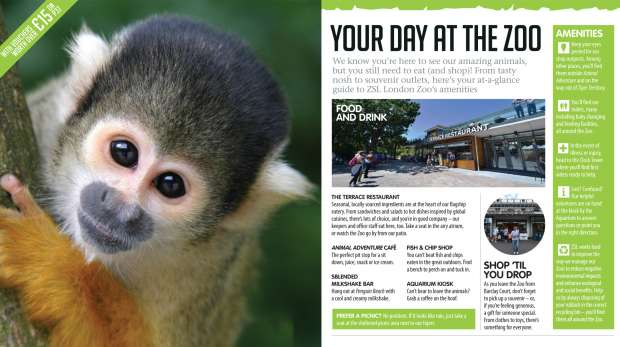 London Zoo visitor guidebook