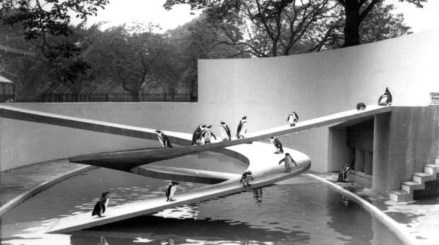 Lubetkin penguin pool