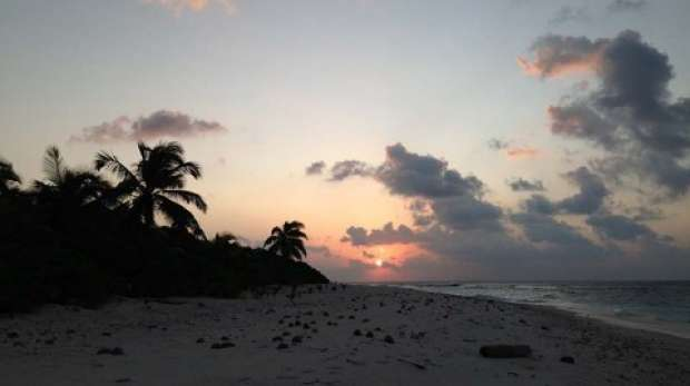 Sunrise; Vache marine; rat eradication; Chagos