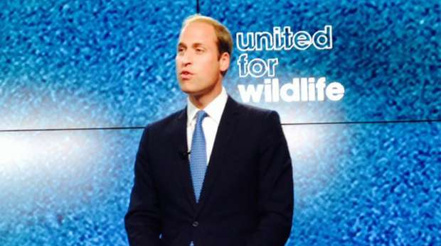 Prince William United for Wildlife