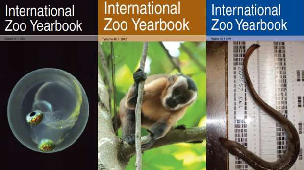 Covers for international zoology yearbook