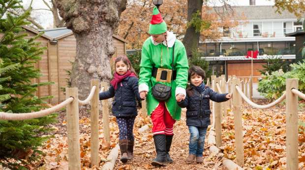 Meet Santa and his elves at ZSL London Zoo