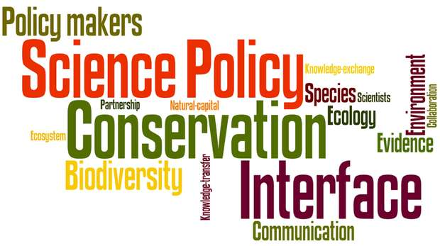 Conservation science-policy interface
