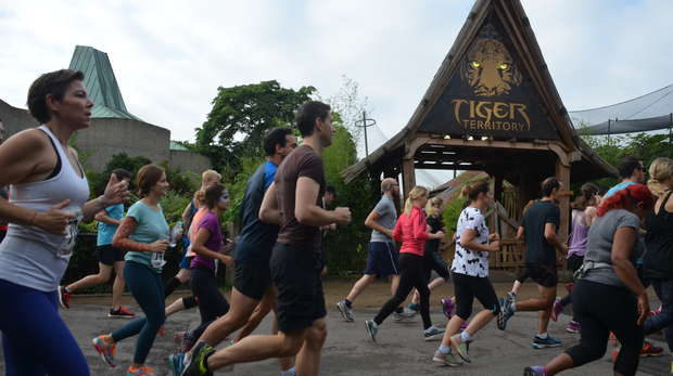Runners take part in the London Zoo stampede
