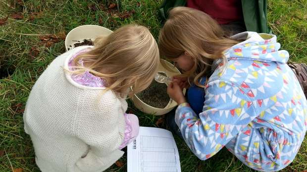 Students doing the bioblitz