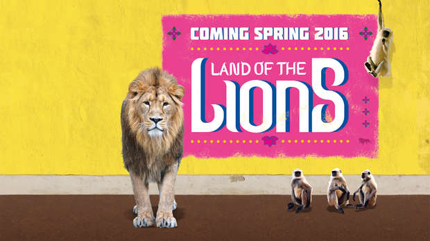 Land of the Lions Coming Soon