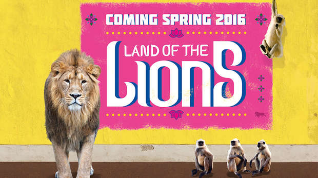 Land of the Lions creative