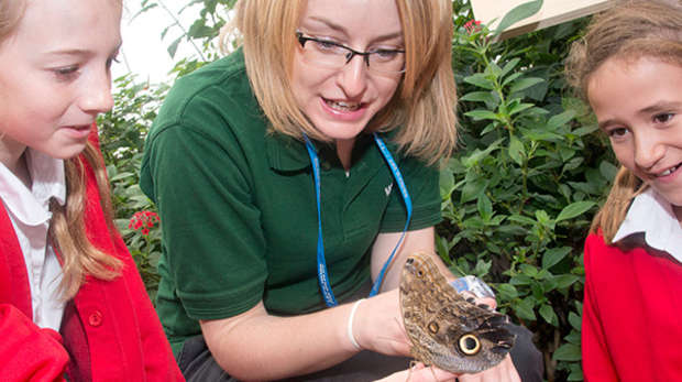 Whipsnade Zoo schools session