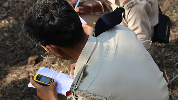 Gir Forest rangers users SMART technology