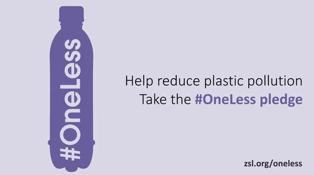 Take the #OneLess pledge!
