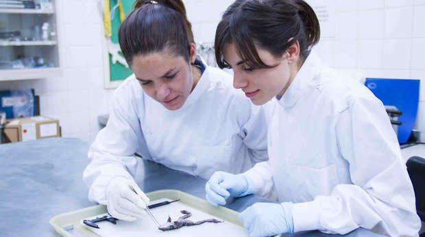 Institute of Zoology scientists