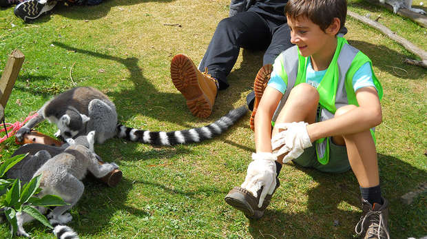 Junior Zoo Academy (8-10 years old) | Zoological Society of London (ZSL)