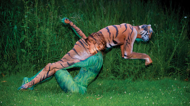 Body paint creation for Streak for Tigers