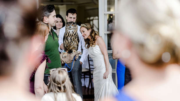 Bride with Eurasian owl