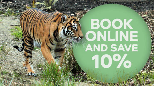Save up to 10% when you book online