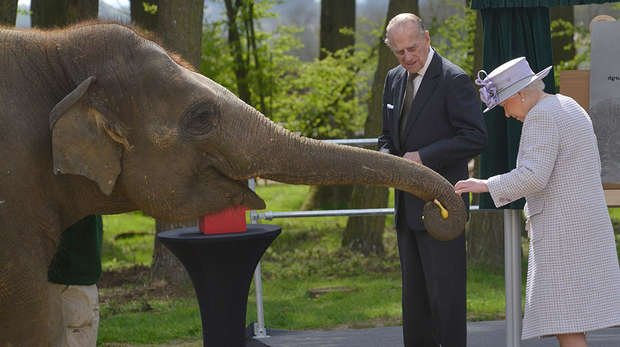 HM The Queen opens Centre for Elephant Care