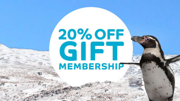 20% off ZSL gift membership