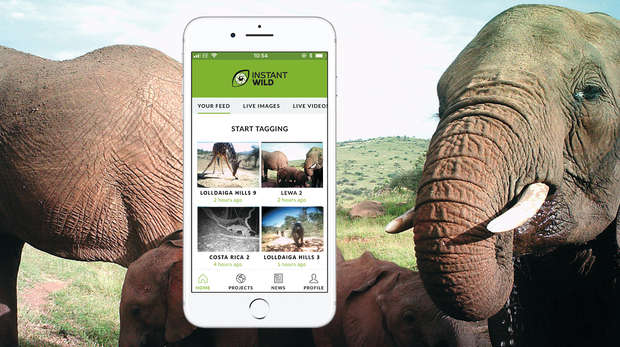 Instant Wild - conservation at your fingertips