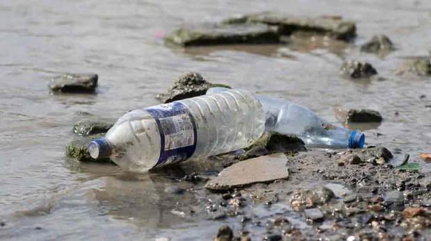 Washed up plastic bottle