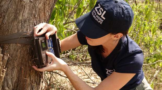 Camera trap installation in India