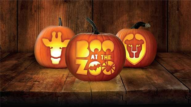 Boo at the Zoo
