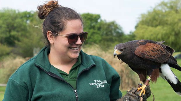 Daily talks at ZSL Whipsnade Zoo