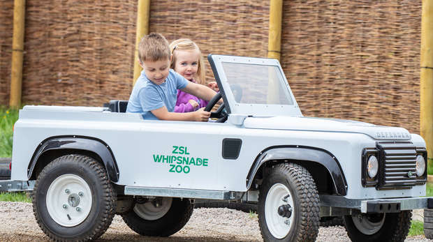 ZSL Whipsnade mini safari cars