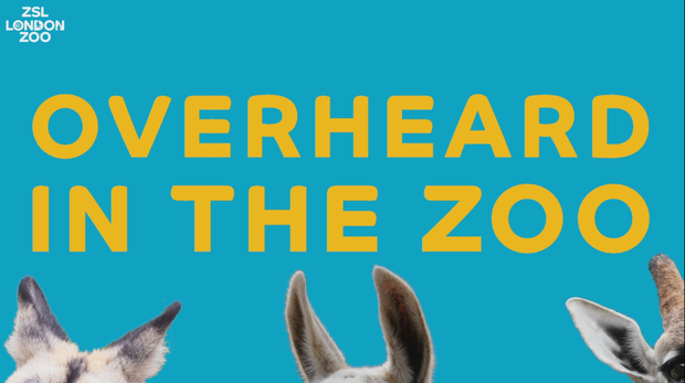 Overheard in the Zoo