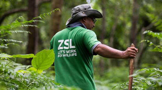 ZSL conservationist in grass wearing a hat